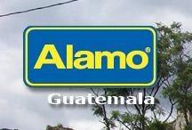Alamo Guatemala